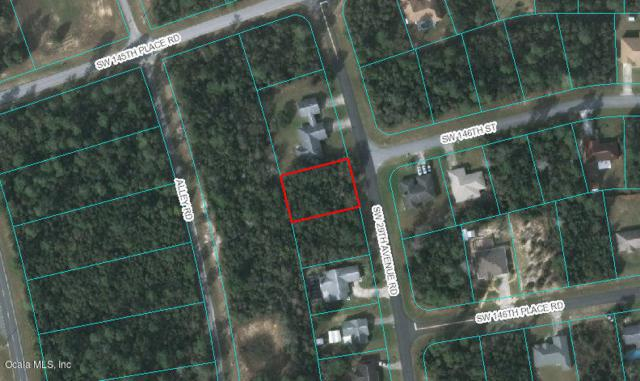 00 SW 29TH AVE Road, Ocala, FL 34473 (MLS #556809) :: Realty Executives Mid Florida