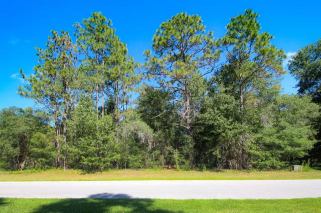 TBD SW 195th Street, Dunnellon, FL 34432 (MLS #556839) :: Realty Executives Mid Florida