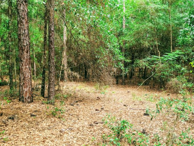 0 SW 97 Place, Dunnellon, FL 34431 (MLS #556845) :: Realty Executives Mid Florida