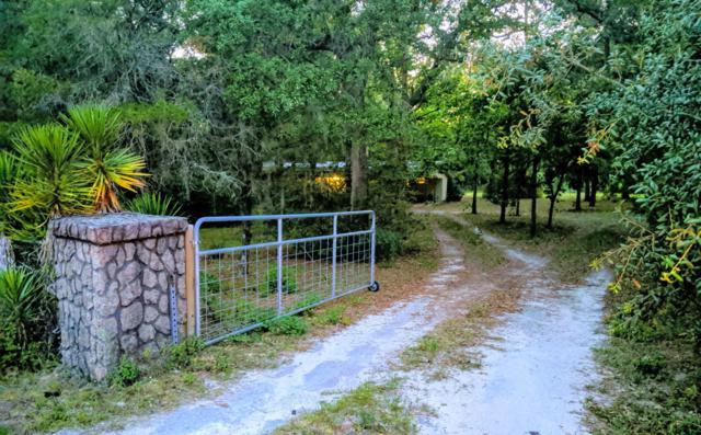 1080 SE Hwy 317, Old Town, FL 32680 (MLS #556847) :: Bosshardt Realty