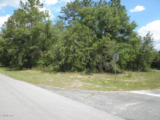 11137 N Morrell Drive, Citrus Springs, FL 34433 (MLS #556905) :: Bosshardt Realty