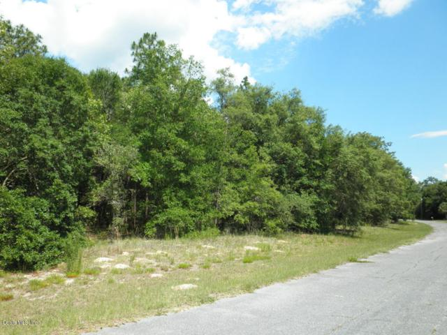 11115 N Morrell Drive, Citrus Springs, FL 34433 (MLS #556906) :: Bosshardt Realty