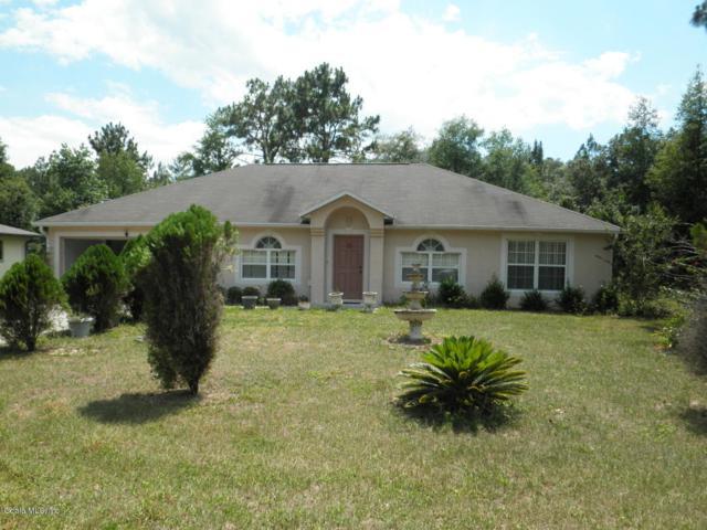 8312 N N Pikinz Way Way, Citrus Springs, FL 34433 (MLS #556909) :: Realty Executives Mid Florida