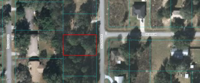 00 SW 202nd Avenue, Dunnellon, FL 34431 (MLS #557253) :: Realty Executives Mid Florida