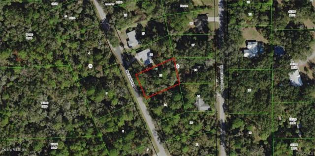 11117 W Cedar Lake Drive, Crystal River, FL 34428 (MLS #557297) :: Bosshardt Realty
