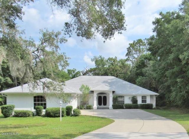 19609 SW 93 Place, Dunnellon, FL 34432 (MLS #557314) :: Realty Executives Mid Florida