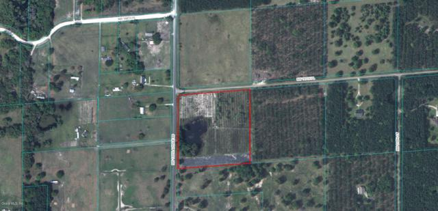0 NW 167th Place Court, Reddick, FL 32686 (MLS #557372) :: Pepine Realty