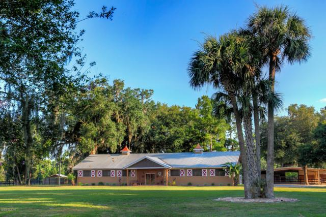 21250 NW 86th Avenue, Micanopy, FL 32667 (MLS #557446) :: Bosshardt Realty