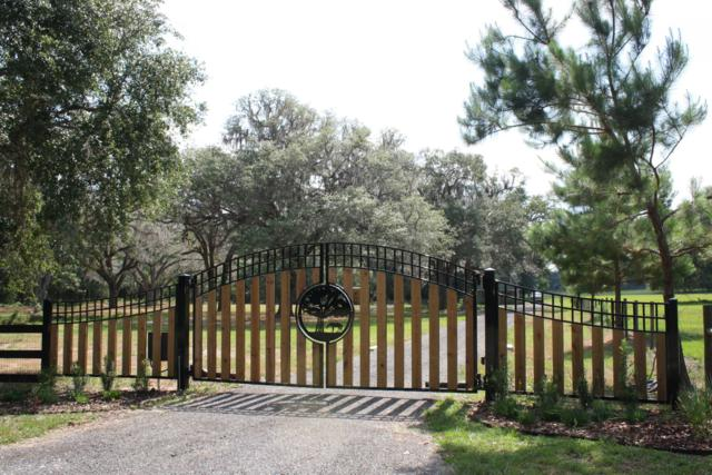 Address Not Published, Reddick, FL 32686 (MLS #557481) :: Realty Executives Mid Florida
