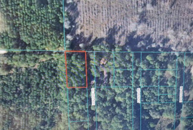 TBD NE 65TH Avenue, Citra, FL 32113 (MLS #557517) :: Pepine Realty