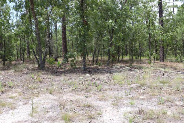 0 SW 93rd Place, Dunnellon, FL 34432 (MLS #557845) :: Pepine Realty