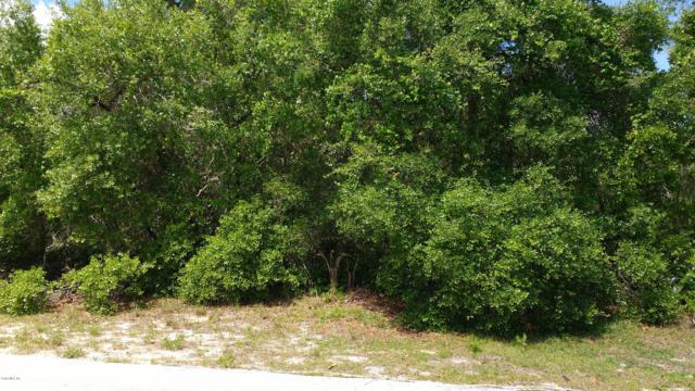 TBA SW 175th Loop, Ocala, FL 34473 (MLS #557892) :: Realty Executives Mid Florida