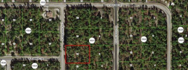 6709 N Harcross Avenue, Citrus Springs, FL 34433 (MLS #557914) :: Bosshardt Realty