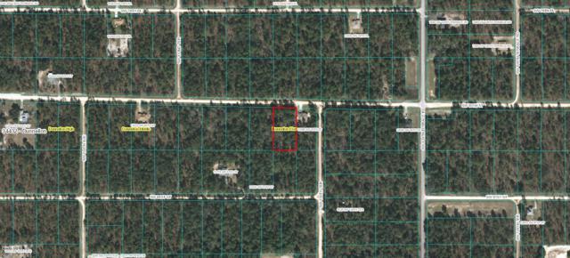 Lot6w160' SW 80th Street, Dunnellon, FL 34432 (MLS #557984) :: Pepine Realty