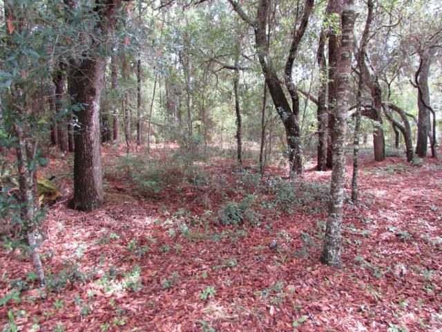 LOT 22 SW 188 Circle, Dunnellon, FL 34432 (MLS #557996) :: Pepine Realty