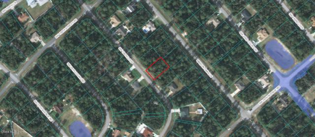 2369 SW 156th Loop, Ocala, FL 34473 (MLS #558010) :: Bosshardt Realty