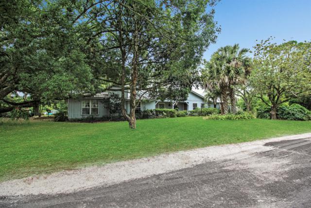 3450 NW 60th Street, Ocala, FL 34475 (MLS #558082) :: Realty Executives Mid Florida