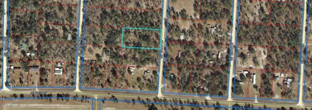 TBD SE 132nd Court, Williston, FL 32696 (MLS #558101) :: Realty Executives Mid Florida