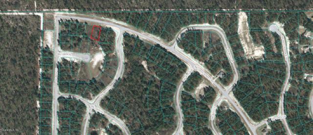8900 SW 135th Street Road, Ocala, FL 34473 (MLS #558107) :: Pepine Realty