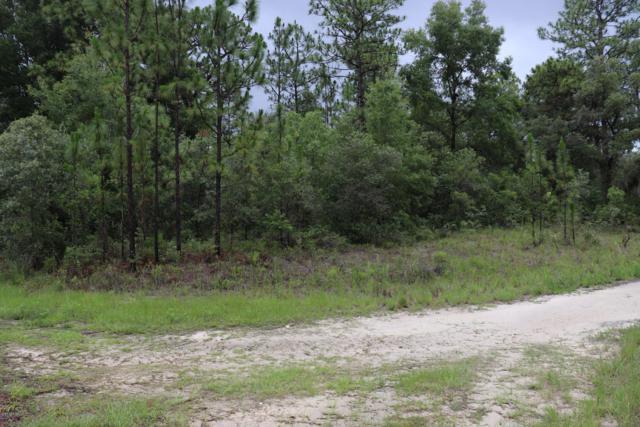 5353 N John Henry Terrace, Dunnellon, FL 34433 (MLS #558168) :: Bosshardt Realty