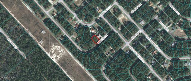 00 SW 50th Circle, Ocala, FL 34473 (MLS #558175) :: Realty Executives Mid Florida