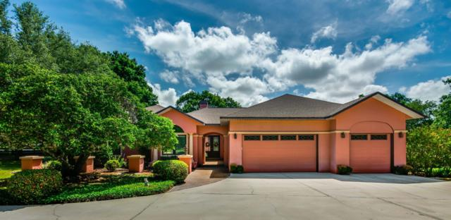 8355 SE 7th Avenue Road, Ocala, FL 34480 (MLS #558182) :: Pepine Realty