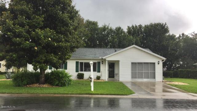 8700 SE 140th Place Road, Summerfield, FL 34491 (MLS #558224) :: Realty Executives Mid Florida