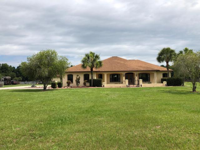 6421 NW 12th Street, Ocala, FL 34482 (MLS #558231) :: Realty Executives Mid Florida