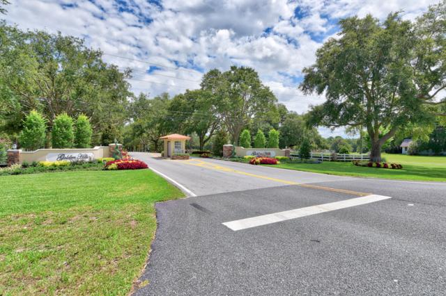 5743 NW 80th Ave Road, Ocala, FL 34482 (MLS #558369) :: Bosshardt Realty
