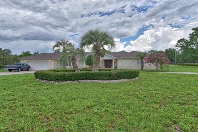 6903 SW 93rd Street Road, Ocala, FL 34476 (MLS #558410) :: Realty Executives Mid Florida