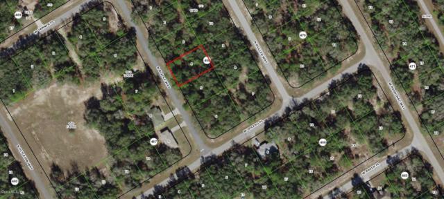 8501 N Bladle Way, Citrus Springs, FL 34434 (MLS #558458) :: Pepine Realty