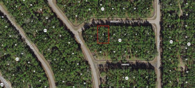 156 E Simms Lane, Citrus Springs, FL 34434 (MLS #558461) :: Pepine Realty