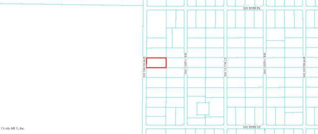 00 SW 140 Avenue, Dunnellon, FL 34432 (MLS #558498) :: Pepine Realty