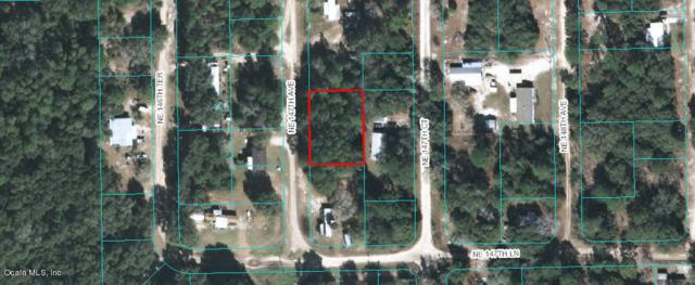 TBD NE 147TH Avenue, Fort Mccoy, FL 32134 (MLS #558516) :: Thomas Group Realty