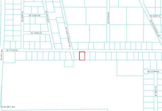 0 SE 127 Place, Belleview, FL 34420 (MLS #558542) :: The Dora Campbell Team