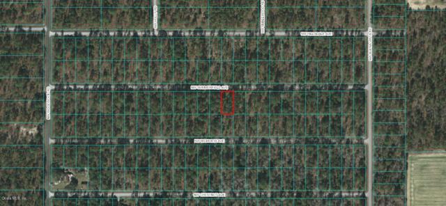 00 NW Summerfield Avenue, Dunnellon, FL 34431 (MLS #558607) :: Pepine Realty