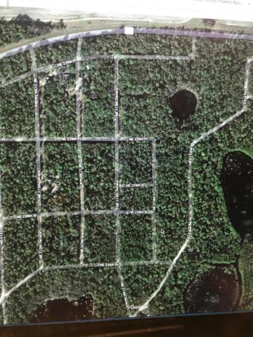 TBD NE 113TH Terrace, Fort Mccoy, FL 32134 (MLS #558705) :: Bosshardt Realty