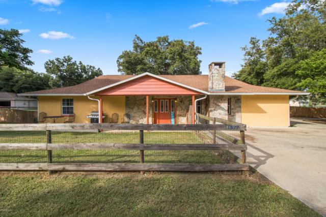 11577 SE 72nd Terrace Road, Belleview, FL 34420 (MLS #558723) :: Bosshardt Realty