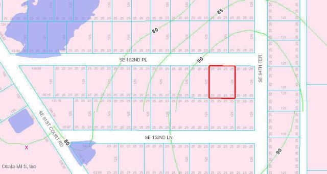 tbd SE 152 Nnd Place, Summerfield, FL 34491 (MLS #558791) :: Pepine Realty