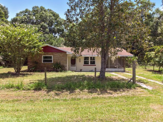 4459 NW 216th Lane, Micanopy, FL 32667 (MLS #558873) :: Bosshardt Realty