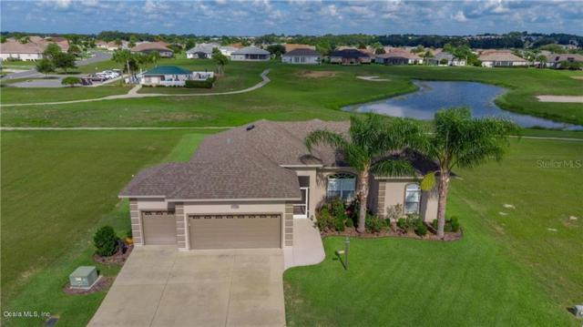 17394 SE 123rd Terrace, Summerfield, FL 34491 (MLS #558963) :: Pepine Realty