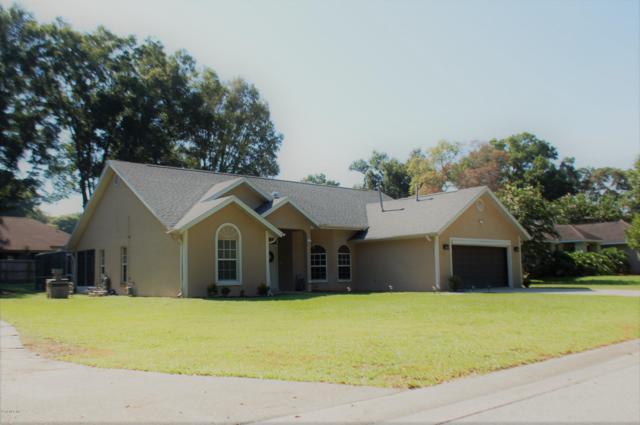 3555 SE 55th Ct. Court, Ocala, FL 34480 (MLS #559029) :: Pepine Realty