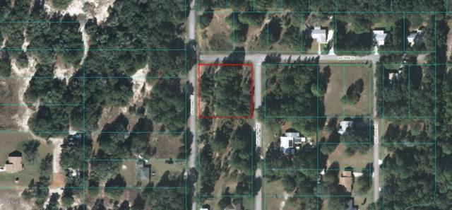 Lot 10 SW 202nd Avenue, Dunnellon, FL 34431 (MLS #559127) :: Pepine Realty