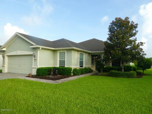 9319 SW 66th Loop, Ocala, FL 34481 (MLS #559187) :: Bosshardt Realty