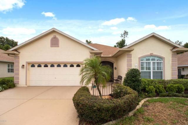 12482 SE 173rd Lane, Summerfield, FL 34491 (MLS #559277) :: Pepine Realty