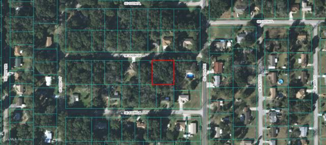 0 SE 136th Street, Summerfield, FL 34491 (MLS #559301) :: Realty Executives Mid Florida