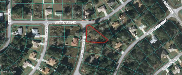 TBD Dogwood Drive Trail, Ocala, FL 34472 (MLS #559372) :: Bosshardt Realty