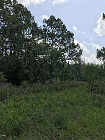 0 SW 21 Place, Dunnellon, FL 34432 (MLS #559385) :: Realty Executives Mid Florida