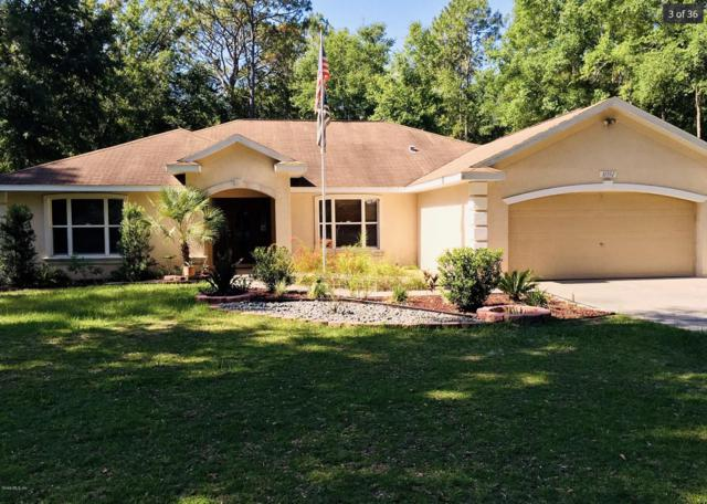 10592 NW 11th Place, Ocala, FL 34482 (MLS #559401) :: Bosshardt Realty