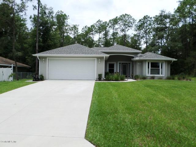 10366 N Holcomb Drive, Citrus Springs, FL 34434 (MLS #559408) :: Bosshardt Realty